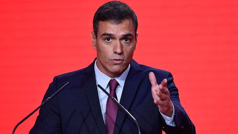 Socialistledaren Pedro Sanchez