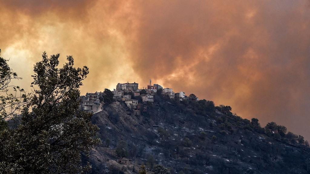 Rök från en skogsbrand i Kabylie-regionen, utanför Alger.