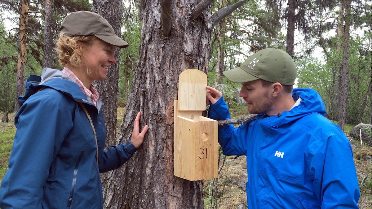 Åsa Berglund, lektor vid Institutionen för ekologi, miljö och geovetenskap vid Umeå universitet och doktoranden Johan Lidman.