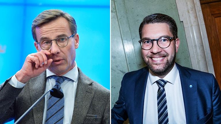 Två män i glasögon och kostym.