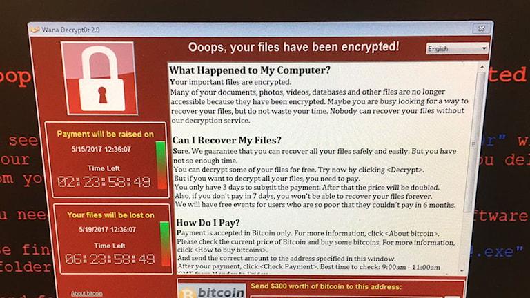Dataskärm med en informationsruta om att man måste betala för att få tillgång till datorn igen.