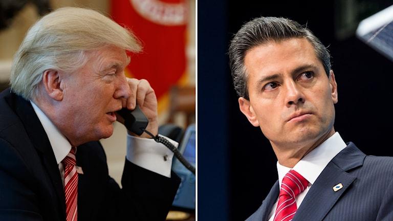 Donald Trump och Enrique Peña Nieto