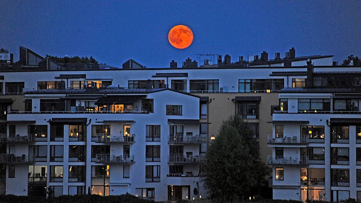 Fullmåne över flerfamiljshus i Hammarby Sjöstad.