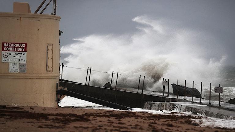 Vågorna slåt iland vid Singer Island, Florida när orkanen Matthew når kusten.