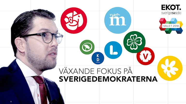 Jimmie Åkesson, partisymboler. Text: Växande fokus på Sverigedemokraterna.