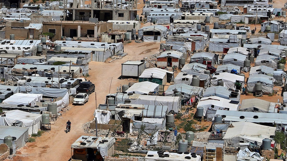 Flyktingläger i den libanesiska gränsstaden Arsal.