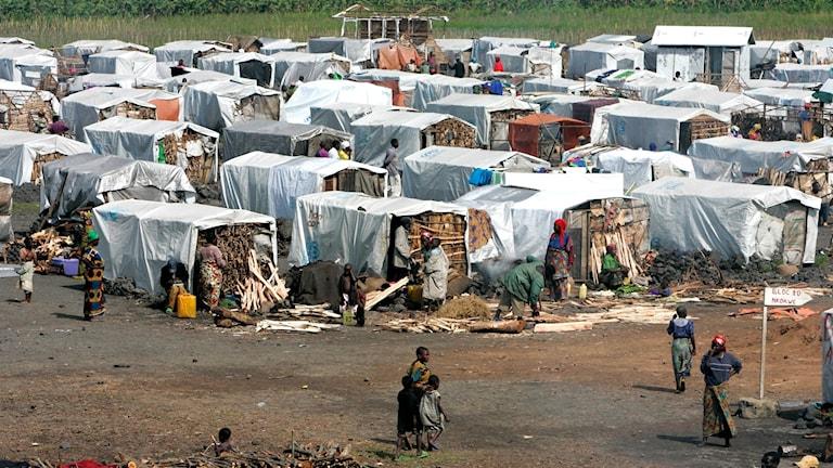 Arkivbild över flyktingläger norr om Goma i östra Kongo-Kinshasa