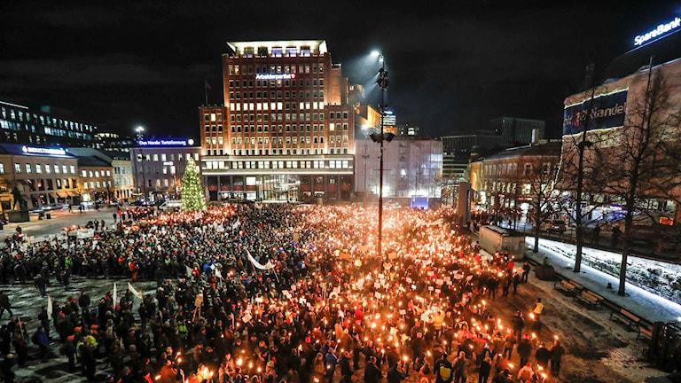 Norska bönder och andra demonstrerade mot varg utanför norska Stortinget i tisdags kväll.