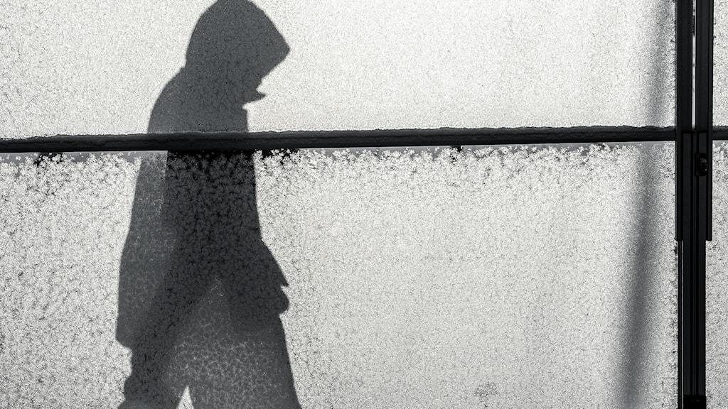 Skuggan av en människa mot en husvägg