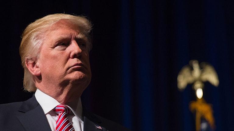 Donald Trump. Foto: Molly Riley/TT.