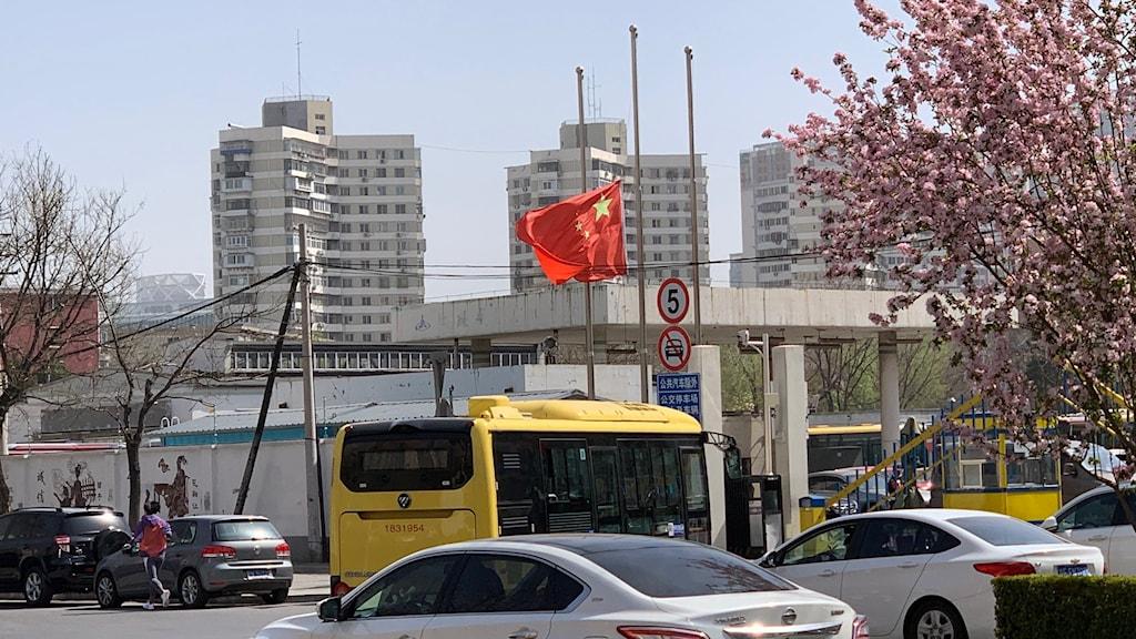 I Kina råder nationell sorgedag idag för de som fallit offer för coronaviruset.