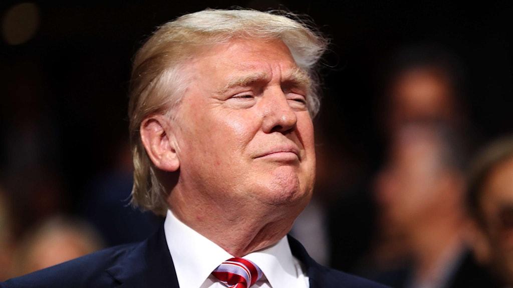 Närbild på Donald Trumps ansikte.
