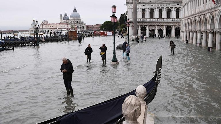 Centrala Venedig på onsdagen.