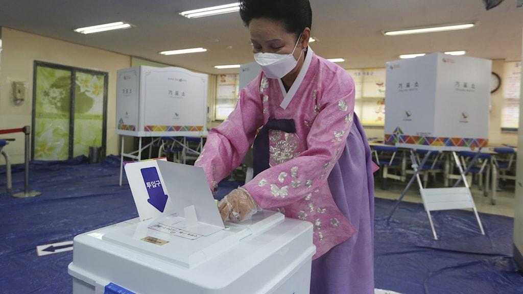 Kvinna iförd munskydd lägger sin röst i det sydkoreanska parlamentsvalet.