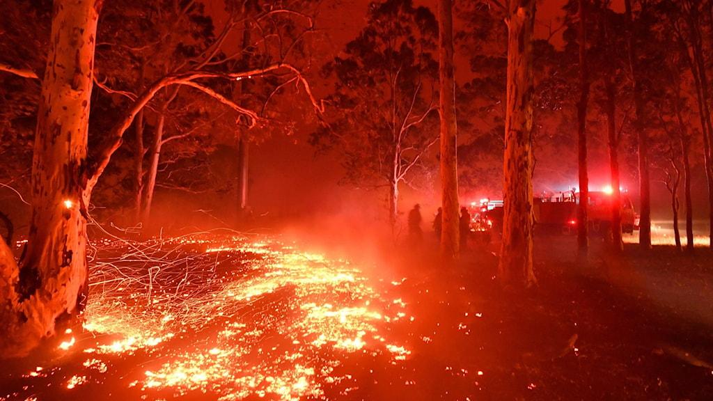 Bränderna i sydvästra Australien skapar en röd dimma som vilar över landskapet.