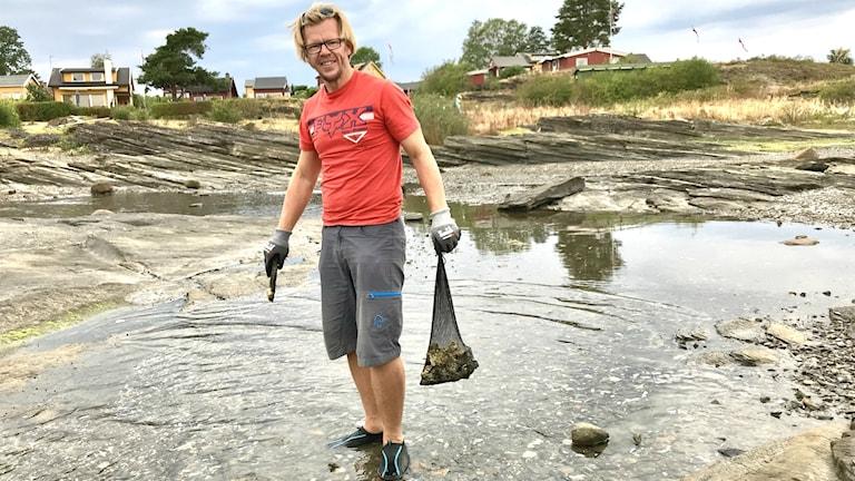 Man plockar stillahavsostron i Oslofjorden