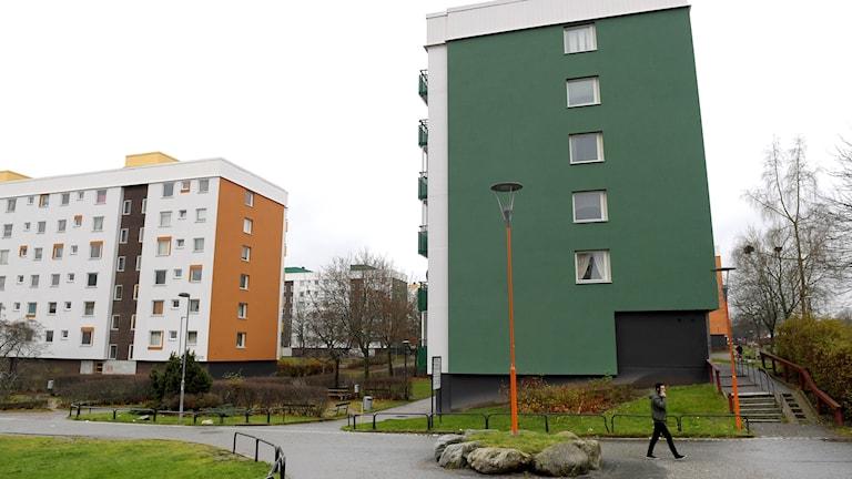 Alby  är en del av Stockholms tätort och en kommundel i Botkyrka kommun.