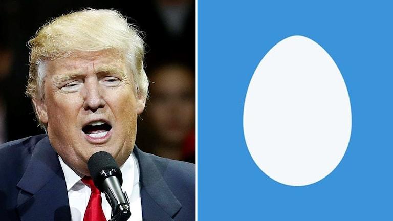 Donald Trump samt twitterägg