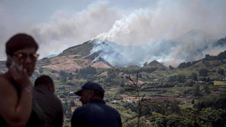 Skogsbrand Gran Canaria