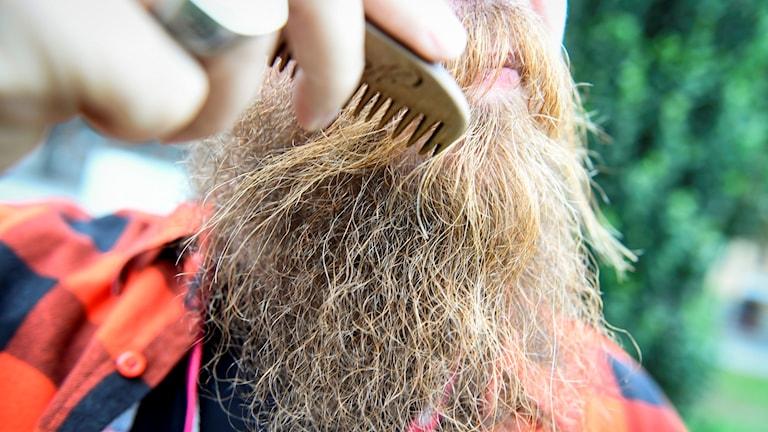 En skäggparad gick genom Stockholm under World Beard Day på lördagen.