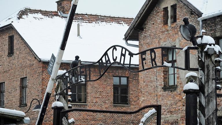 Auschwitz blir allt vanligare som resmål för svenska skolklasser