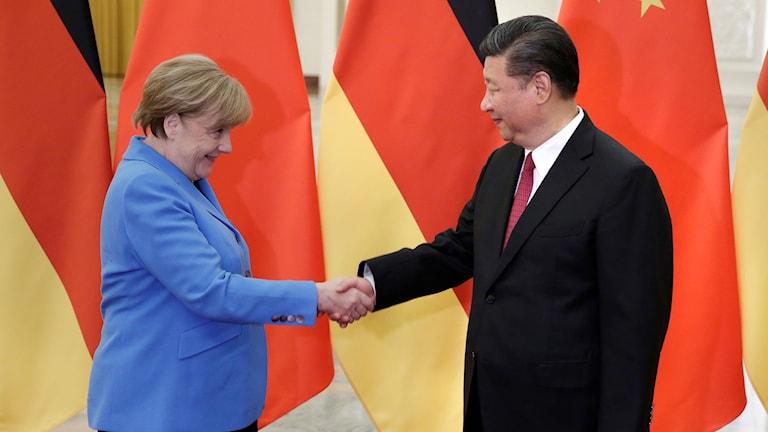 Kinas president Xi Jinping träffar Tysklands förbundskansler Angela Merkel.