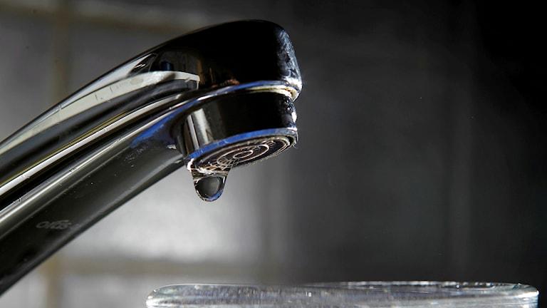 Kökskran som droppar vatten.