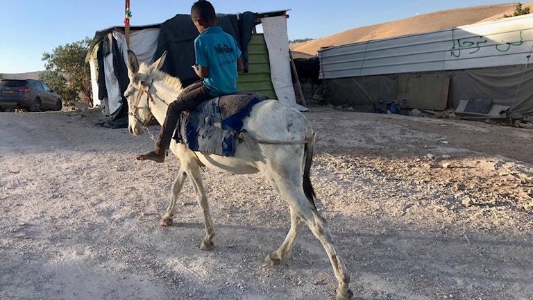 Ett barn rider på en åsna i byn Khan al-Ahmar.