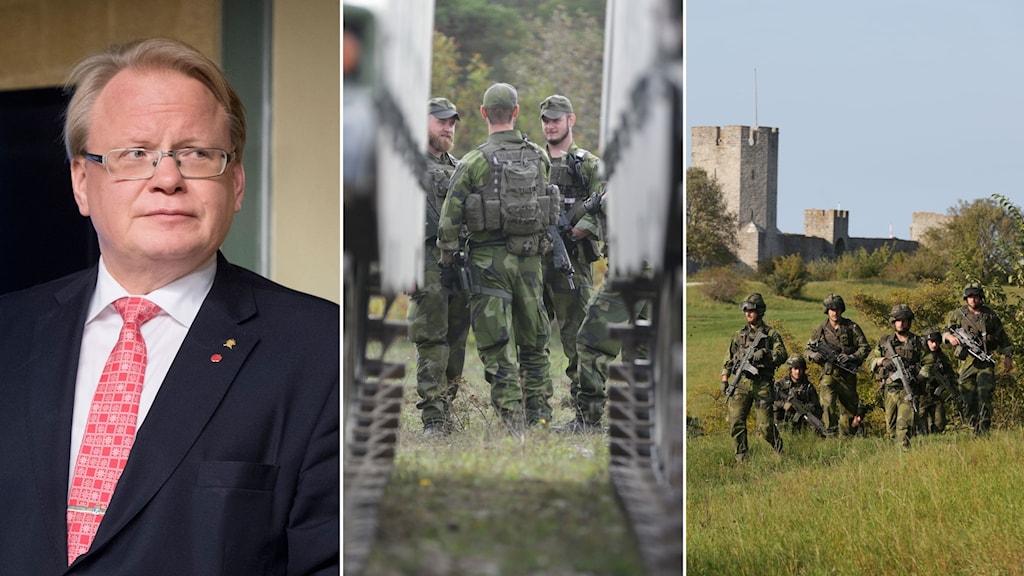 Tredelad bild: Peter Hultqvist tittar åt vänster, militärer står och pratar, militärer går i gräset på Gotland