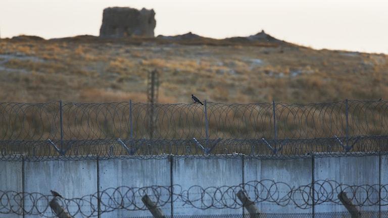 Gränsområdet mellan Turkiet och Syrien.