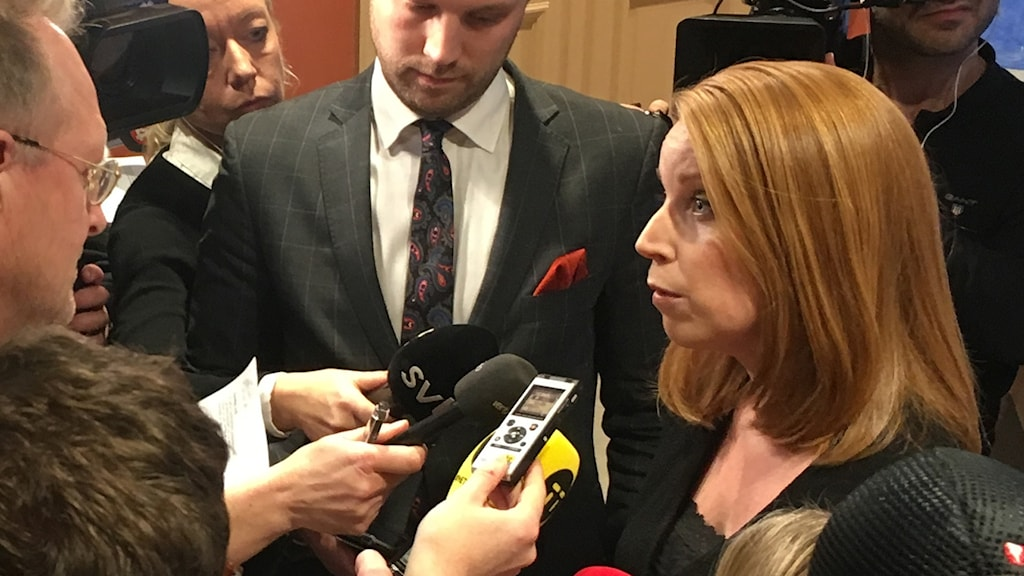 Annie Lööf presskonferens