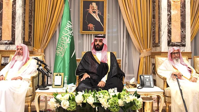 Ny kronprins Saudiarabien Mohammed bin Salman