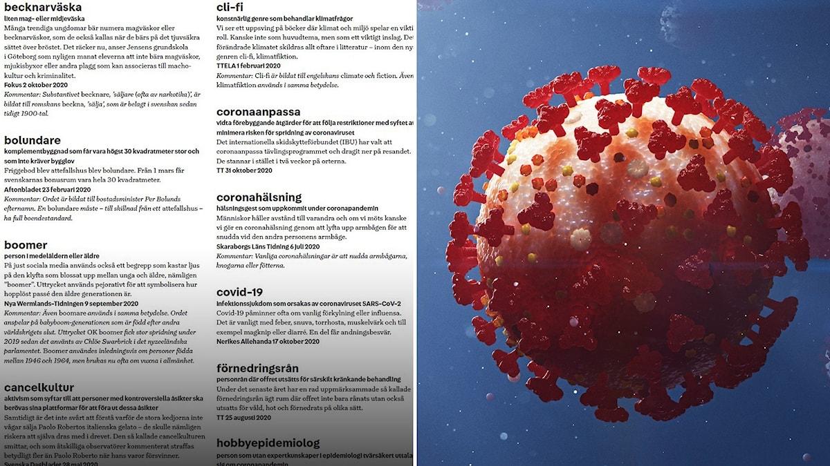 Del av nyordslistan 2020 och illustration av coronavirus