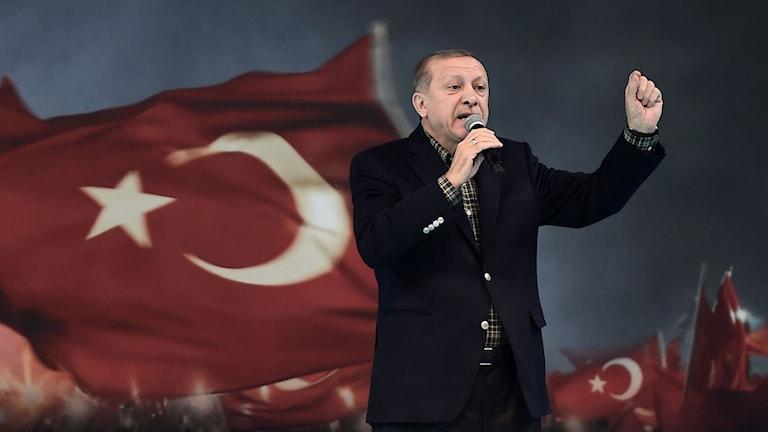 Recep Tayyip Erdogan på ett möte i Ankara i söndags. Foto: Ozan Kose/TT.