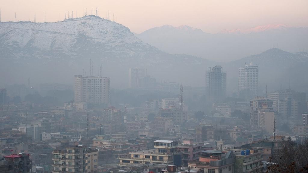Afghanistan: Minst 100 döda i en attack