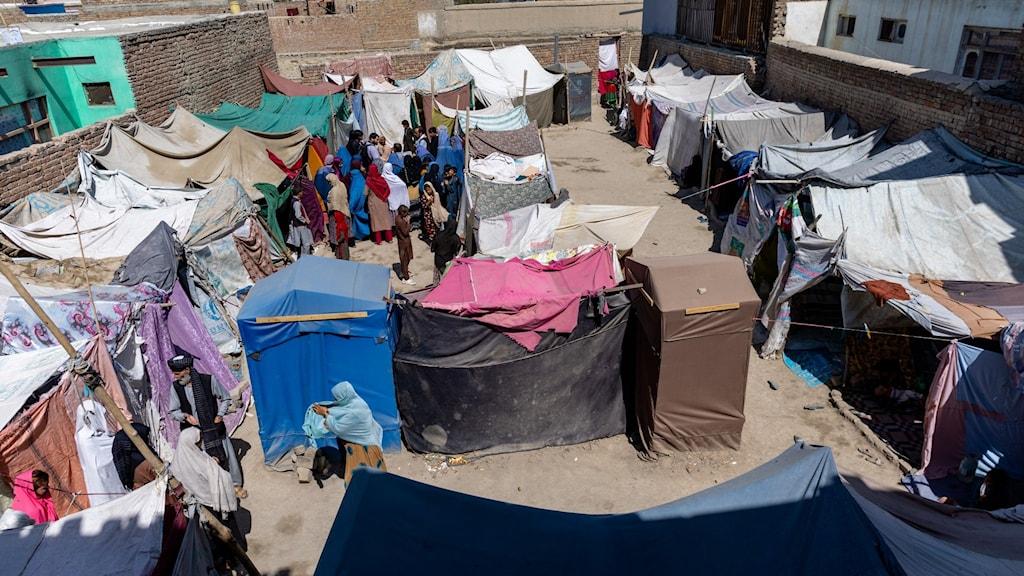 Tillfälligt skyddsläger i Afghanistan.