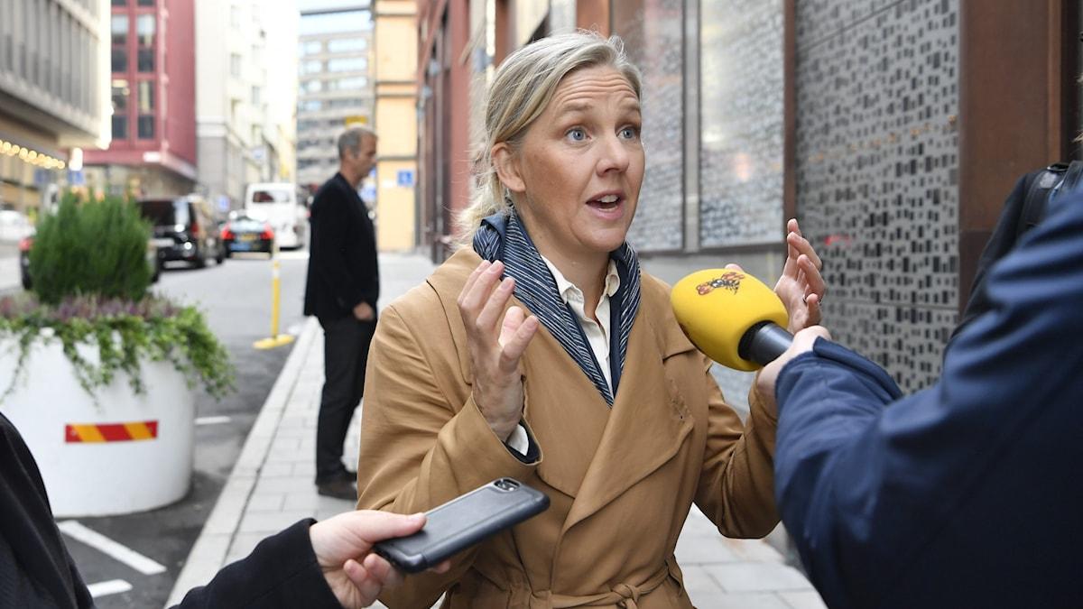 MP-topp vill att Karolina Skog blir nytt språkrör