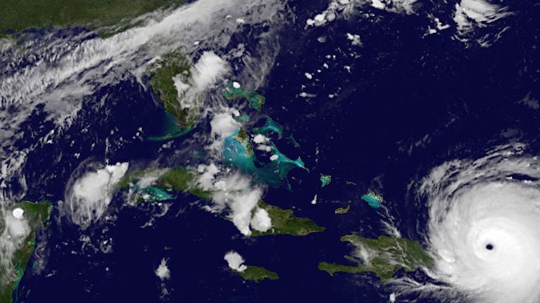 stormen Irma