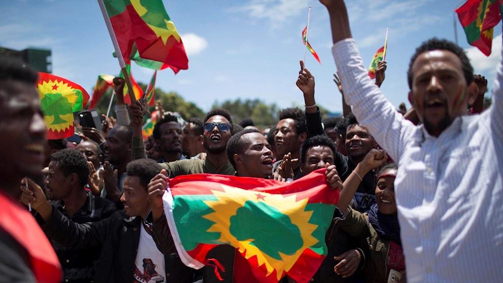 Attackerna skedde samtidigt som centrala Addis Abeba fylldes av firande oromos som välkomnade ett tidigare förbjudet oppositionellt oromoparti hem efter decennier i exil. Foto: Mulugeta Ayene/TT.
