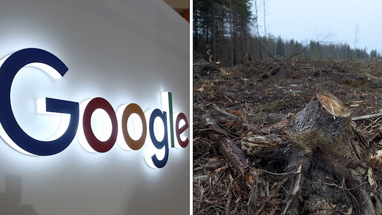 Avesta kommun har berett marken för Google. (Arkvibild.)