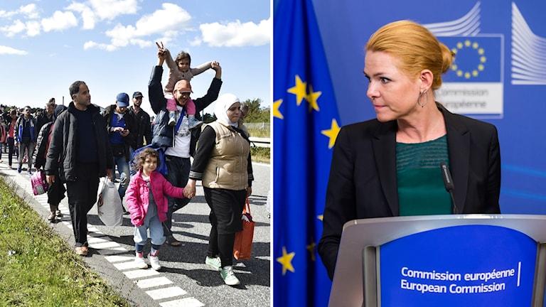 Färre sökte asyl i Norden förra året