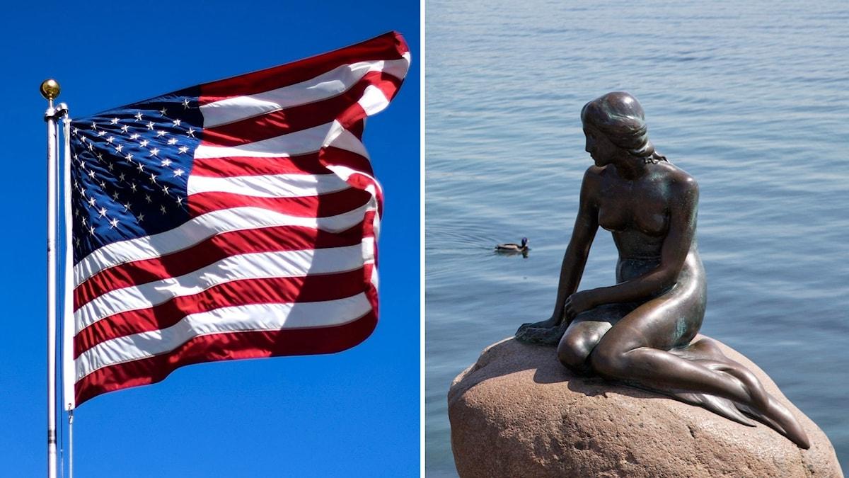 Amerikansk flagga och Lilla havsfrun, symbol för Danmark. Foto: TT. Montage: Sveriges Radio.