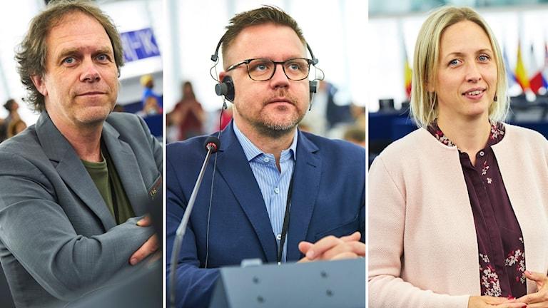 Pär Holmgren (MP), Fredrick Federley (C), Jytte Guteland (S).