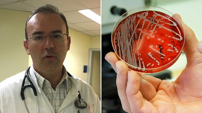 Infektionsläkaren Drosos Karageorgopoulos och en bild på resistenta bakterier