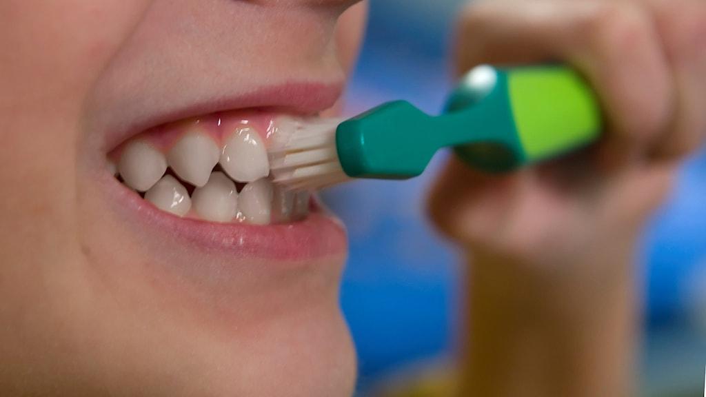 Pojke borstar tänderna