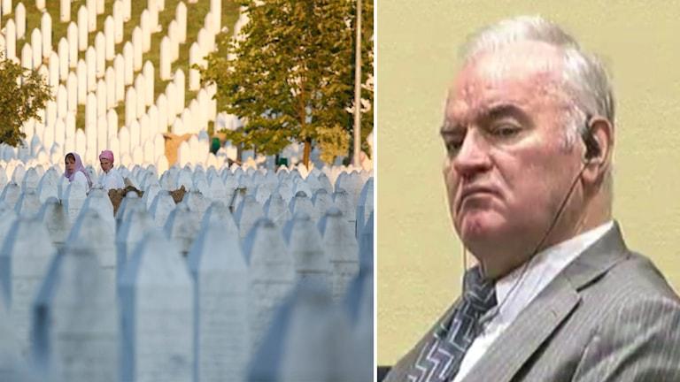 Delad bild: Gravstenar efter massakern i Srebrenica och Mladic i rättegångssalen.