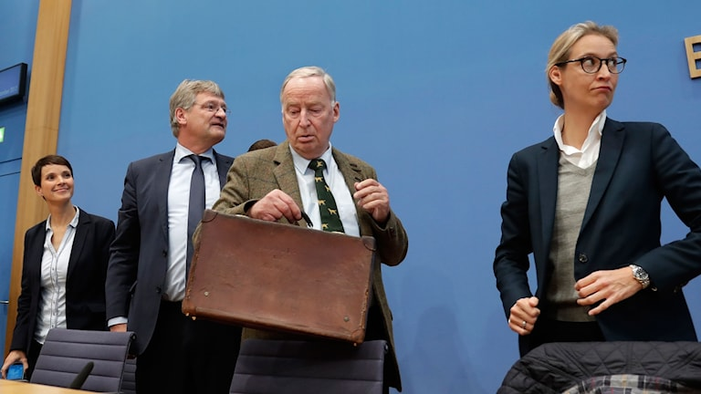 rauke Petry, Jörg Meuthen, Alexander Gauland and Alice Weide