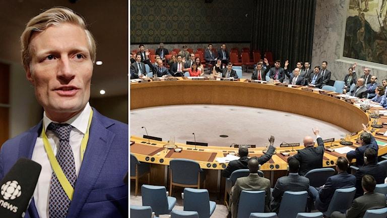 Bildkollage med ett porträtt på Carl Skau och FN:s säkerhetsråd som röstar genom handuppräckning.