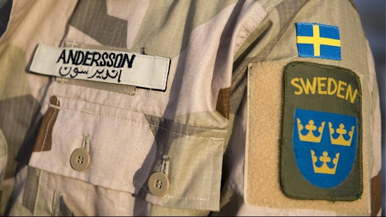 Moderaterna efterlyser information från regeringen om svensk militärpersonal på plats i Irak.