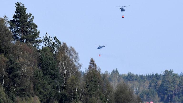 Helikoptrar som vattenbombar brandområdet.